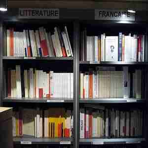 Litterature - La traduction litteraire