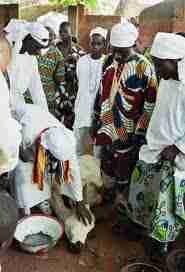 p1101 - Les religions afro-américaines