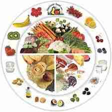 Besoins nutritionnels - Nutriments : Oligoélements