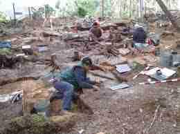 Un site archéologique - Un site archéologique : mode d'emploi