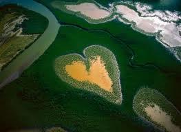 Une nature incroyable1 - L'île coeur