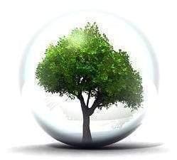 Le management vert1 - Le management vert