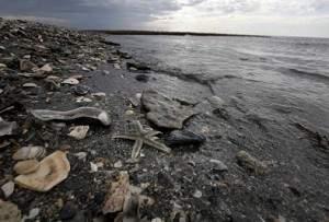 Une explosion dans le golfe du Mexique