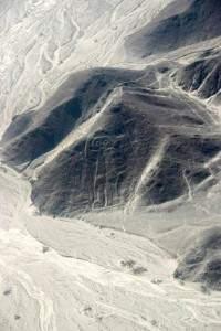 Les tracés de Nazca