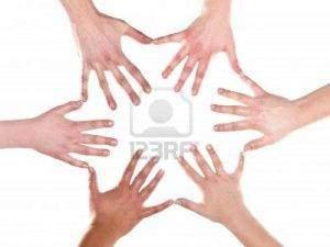 551 300x225 - La formation des membres et des doigts