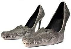 Insolite paire de chaussures