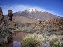 Tenerife 481 - Les volcans en Europe: Espagne