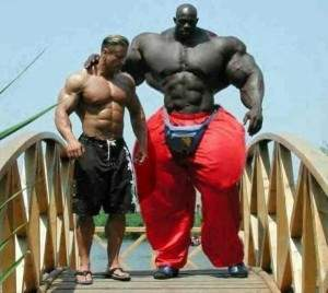 Body building insolite