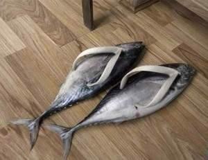 chaussure insolite1 300x231 - Les chaussures plus insolites dans le monde