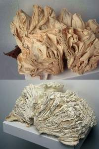 Des sculptures avec les livres