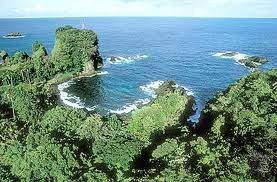 0021 - Indonésie (Java):Ujung Kulon