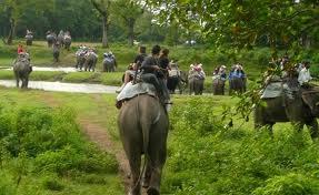 0025 - Népal (Terai): parc royal de Bardia