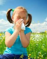 113 - Les villes polluées favorisent-elles l'asthme et les allergies ?