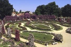 1152 - La roseraie:un pôle d'activités,l'écoute des habitants