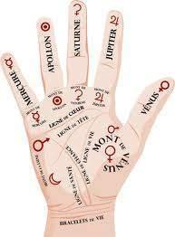 216 - Pourquoi le majeur est-il le doigt le plus long ?