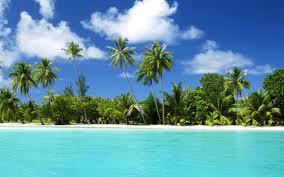 0004 - Généralités : paradis tropical