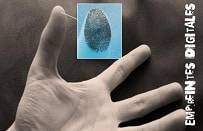 Ce que disent les empreintes digitales lhonorable juge Pollak3 - Ce que disent les empreintes digitales:l'honorable juge Pollak
