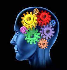277 - Les fonctions mentales : L'intelligence