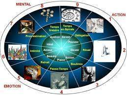 141 - Le temps du vivant : Dans chaque être , des systèmes à mesurer le temps