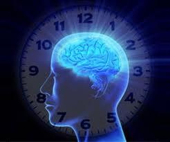 145 - Les rythmes humains : Chaque cellule vit son temps