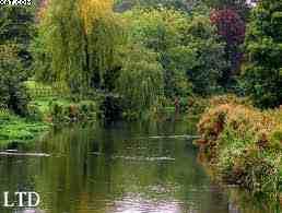 Ladmiration et la valorisation du jardin anglais. - L'art du paysage : L'admiration et la valorisation du jardin anglais