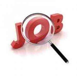 job 300x300 - Emploi aide comptable
