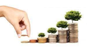épargne net ajousté 300x169 - Économie : L'indicateur de l'épargne nette ajustée