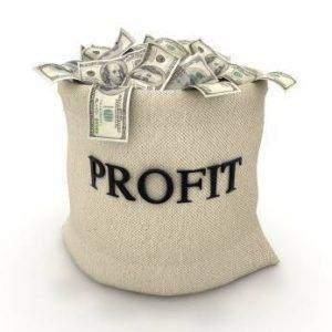 Profit 300x300 - Profit