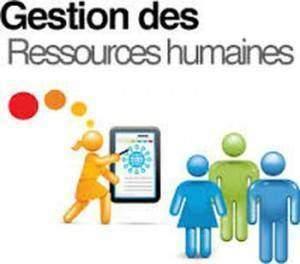 Gestion des ressources humaines 300x264 - Gestion des ressources humaines