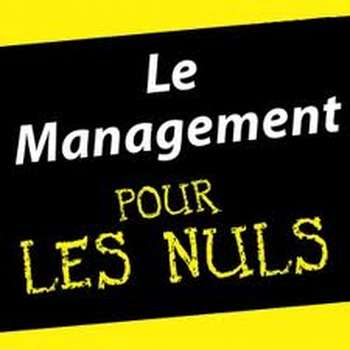 Management pour les nuls - La stratégie verte en ressources humaines