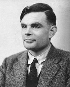 Le modèle de turing drame en mer du nord - Le modèle de Turing:pourquoi le léopard a-t-il des taches?