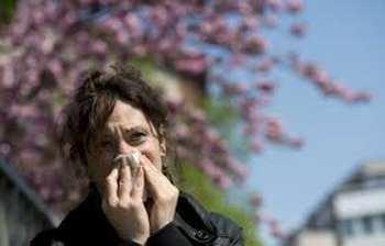 Allergie paris - Allergie paris