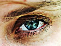 Maladie yeux