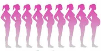 Suivi de la grossesse