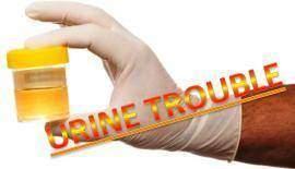 Urine-trouble
