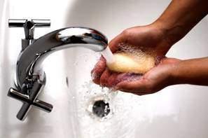 Les infections alimentaires La typhoïde - Les infections alimentaires : La typhoïde