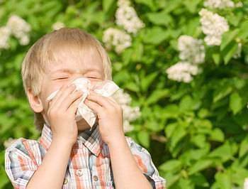 Allergie les réactions allergiques - Allergie : Les réactions allergiques