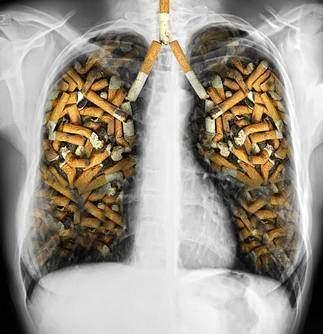 L arret chez les victimes d une maladie liee au tabac - L'arrêt chez les victimes d'une maladie liée au tabac