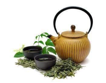 Le thé vert bloque l'invasion des tissus et l'angiogenèse - Les aliments anticancer : Le thé vert bloque l'invasion des tissus et l'angiogenèse