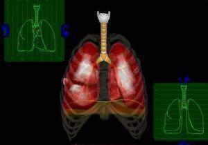 La-respiration-le-contrôle-de-la-ventilation