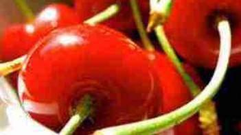Les Anti oxydants La taurine Polyphenols et Flavonoides - Les anti-oxydants: la taurine, polyphénols et flavonoïdes